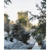 Blarney Castle In The Snow by Donagh Glavin